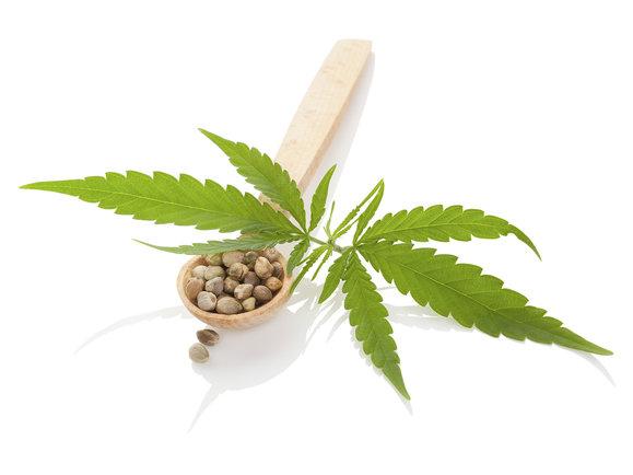 Kozmetika Bione s účinnou látkou Cannabis